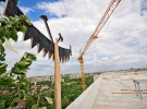 Highest building topped out of Oak Terraces